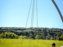 GIANT SWING WITH BIRDS NEST