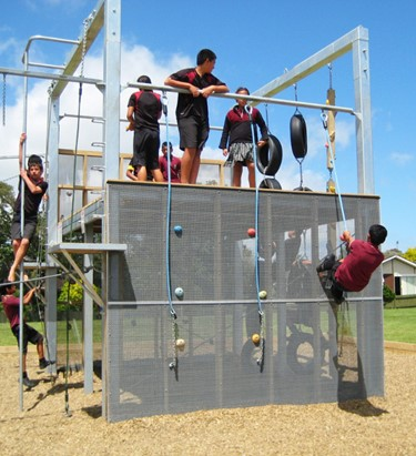 Intermediates & Colleges