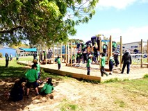 Mt Roskill Primary